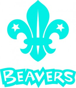 Beaver_CMYK_blue_stack (1)